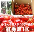さくらんぼ(紅秀峰)1K