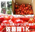 さくらんぼ(佐藤錦)1K