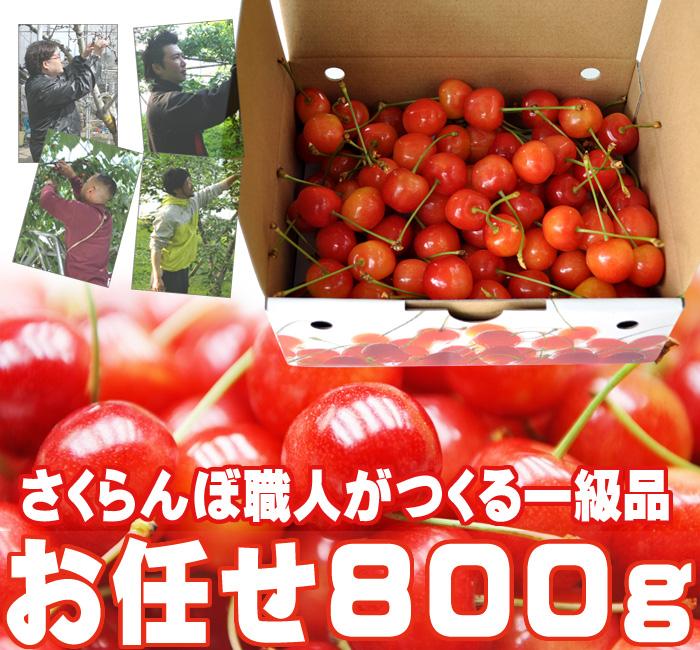 さくらんぼ(お任せ)800g