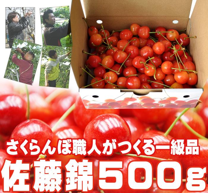 さくらんぼ(佐藤錦)500g