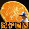 上友農園 上野山さんちのみかん 商品画像