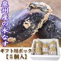 関西夏の味覚 泉州産 水なす(ぬか漬け)10個 水茄子漬/2~8営業日で順次出荷中