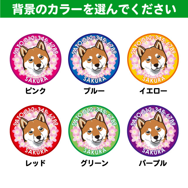 和犬と花丸 桜