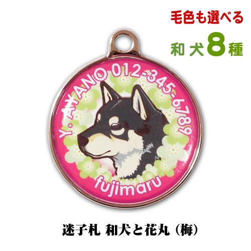 和犬と花丸 梅