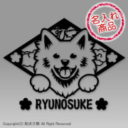 日本スピッツグッズ 笑い犬(日本スピッツ)