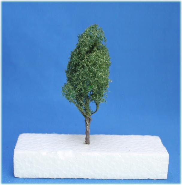 広葉樹模型