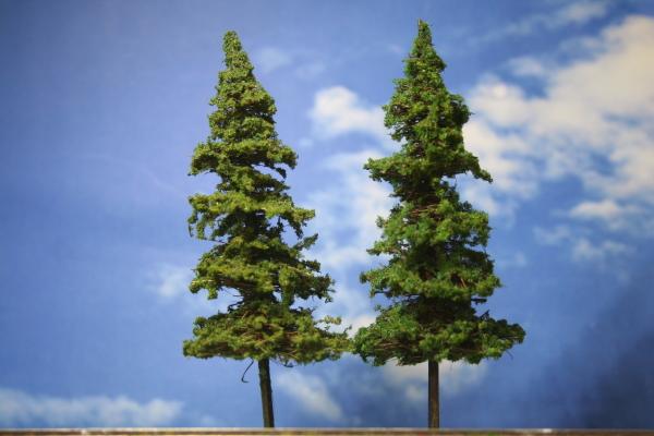 針葉樹建築模型