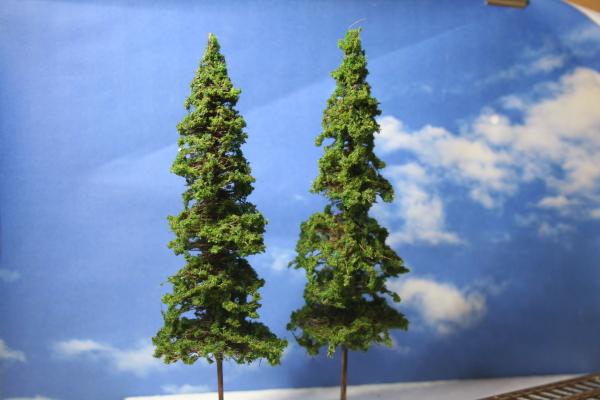 針葉樹植栽