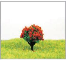 模型添景植栽