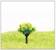 建築模型用樹木
