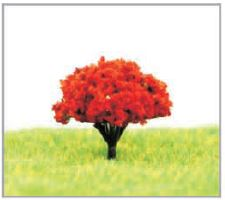 都市デザイン樹木