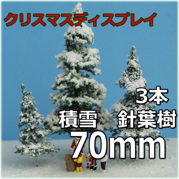 針葉樹70mm