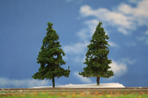 針葉樹模型