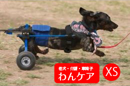 K9カート犬用車椅子 スタンダードXS