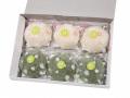 洗顔用こんにゃくパフ『和の力』 【初夏限定】 白3個, 緑茶3個 計6個箱入