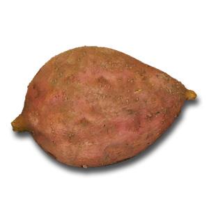 生の安納芋