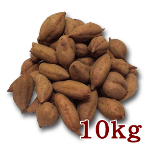 安納芋10kg