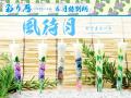 特別柄【彩り暦】6月【風待月】6本入り/送料無料