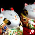 4号ペア福招き猫 盛(WAZAHONPO-41687)