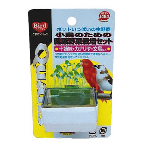 ペッズイシバシ クオリス 小鳥のための健康野菜栽培セット (十姉妹・カナリア・文鳥など)