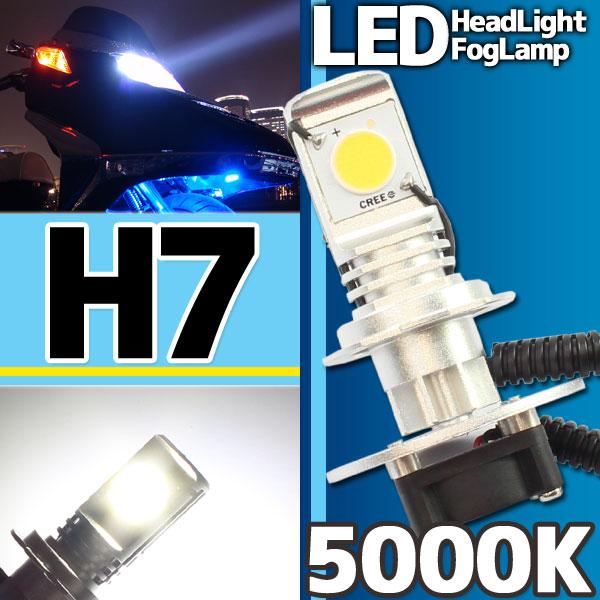 CREE社製 LEDヘッドライト フォグランプ H7 5000k 1灯分