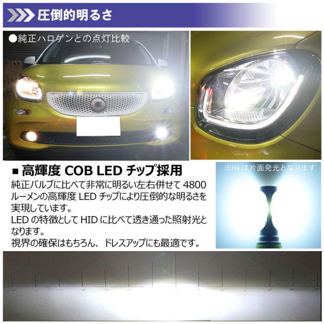 LEDヘッドライトH11