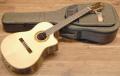 【送料無料】Martinez マルチネス MP-14 Rose エレガット/ギター