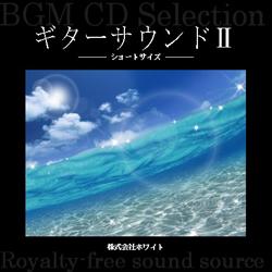 著作権フリー音楽CD 134