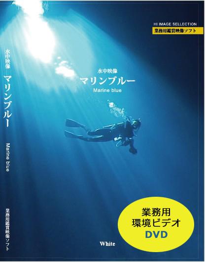 業務用環境ビデオ DVD マリンブルー