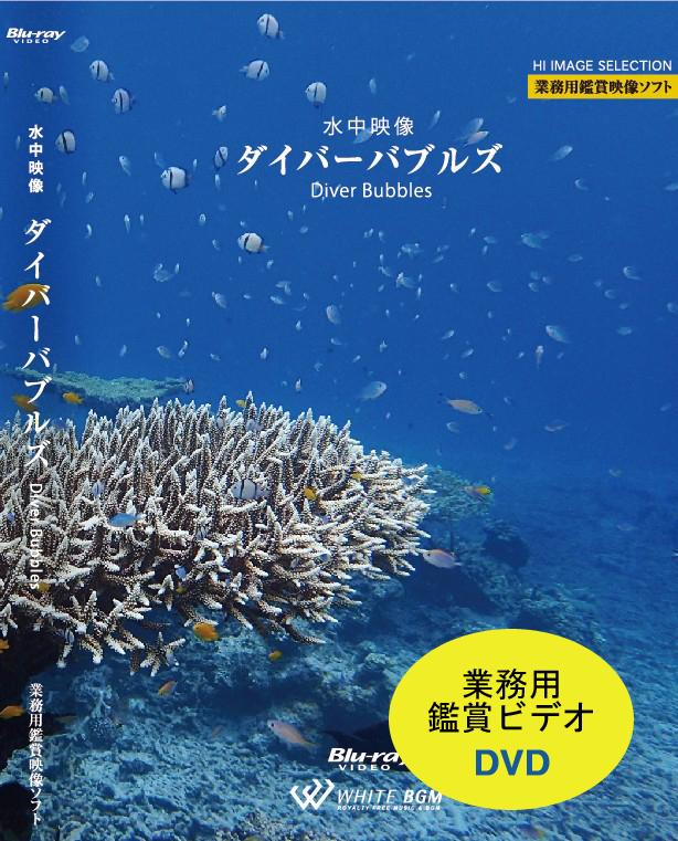 【DVD】業務用鑑賞映像「水中映像・ダイバーバブルズ・ハイビジョン」(40分)【♪モルディブ、セブ、沖縄】#AD-006