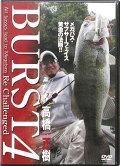 アピス BURST 4 (DVD)