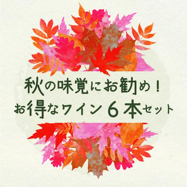 """【送料無料】秋もおウチで美味しいワインを!FUJIMARUセレクト""""ちょっとイイ""""ワイン6本19,800円セット"""