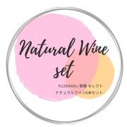 FUJIMARU齋藤セレクト!おすすめナチュラルワイン 6本 20,000円セット
