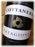 ファタジオーネ[2007] コッタネーラ