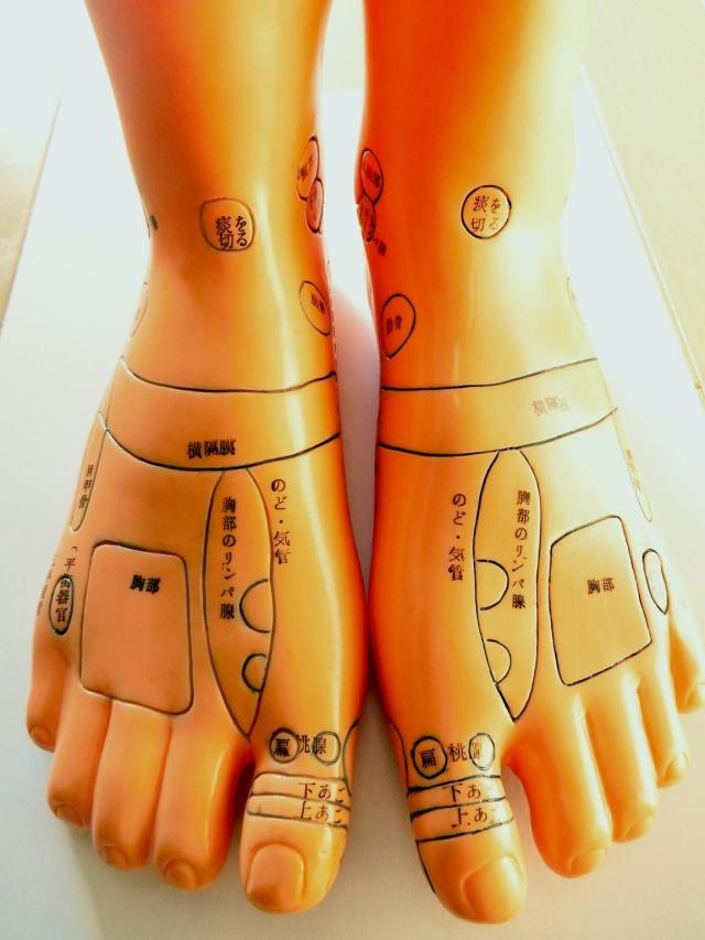 官足法 足型 (両足各部に反射区名記載)