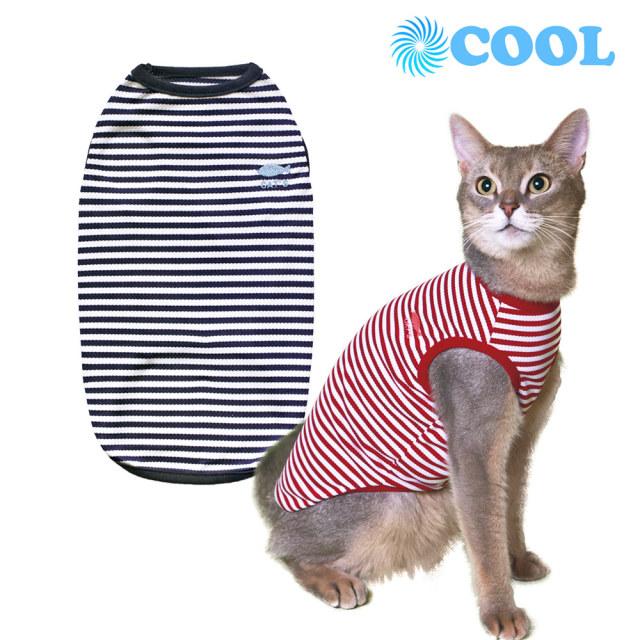 猫の暮らし クールボーダーマリンキャット