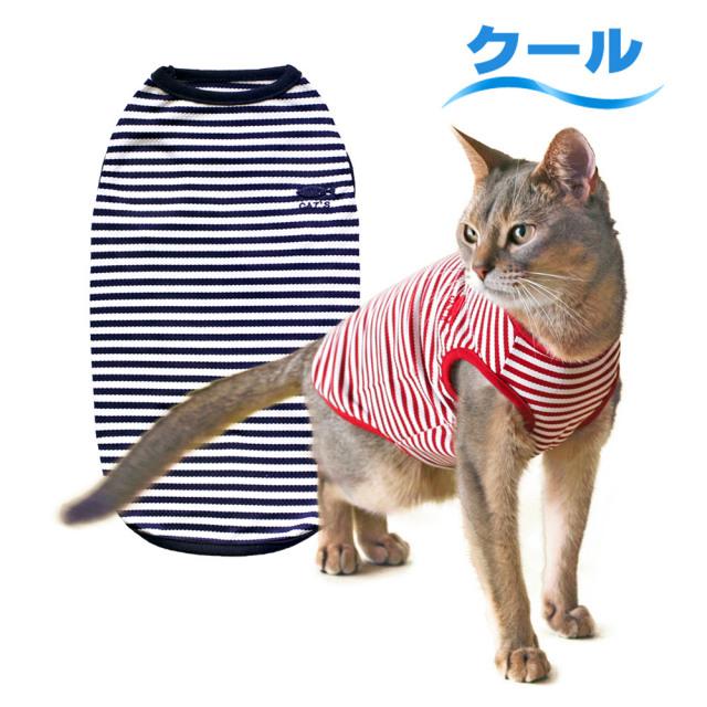 猫の暮らし クールボーダーマリン キャット
