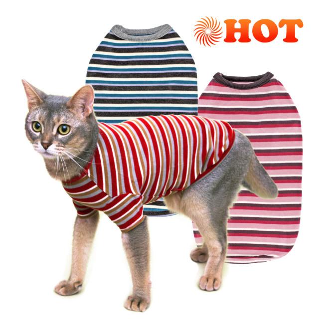 ネコの暮らし ウォームマルチボーダーTキャット