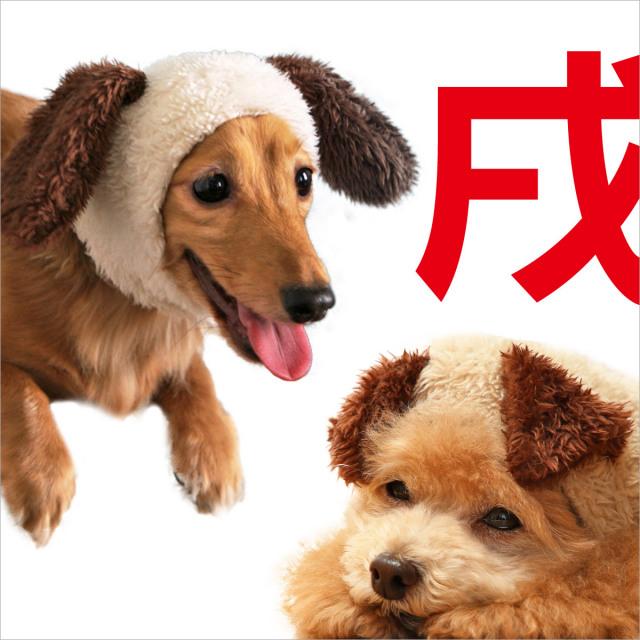 犬と生活 犬耳ハット