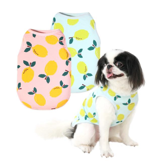 犬と生活 レモンタンク