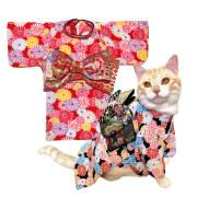 猫の暮らし 猫のお振袖