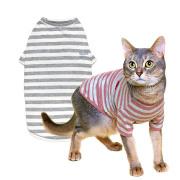 ネコの暮らし オーガニックTシャツキャット