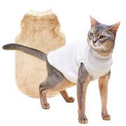ネコの暮らし オーガニックボアキャット