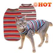 猫の暮らし ウォームマルチボーダーキャット