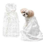犬と生活 ウェディングドレス