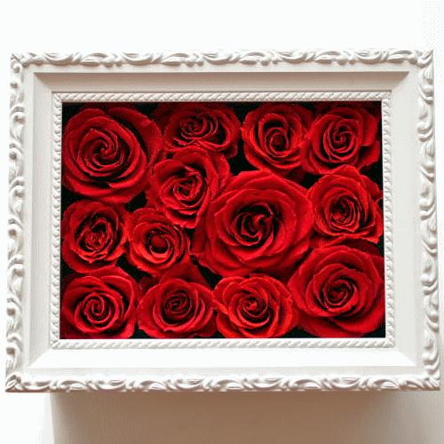 Anniversary Frame : アニバーサリー・フレーム(記念日のお祝いに花贈り)【送料無料】