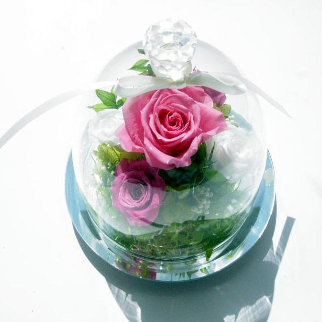 プリザーブドフラワー ブライツ ガラスドーム 画像