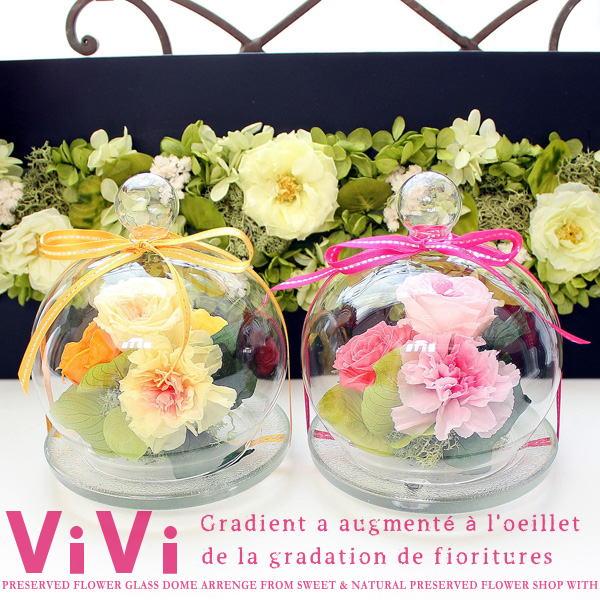 ViVi : ヴィヴィ/グラデーションローズ&フリルのカーネーション(プリザーブドフラワーガラスドーム アレンジ)【送料無料】