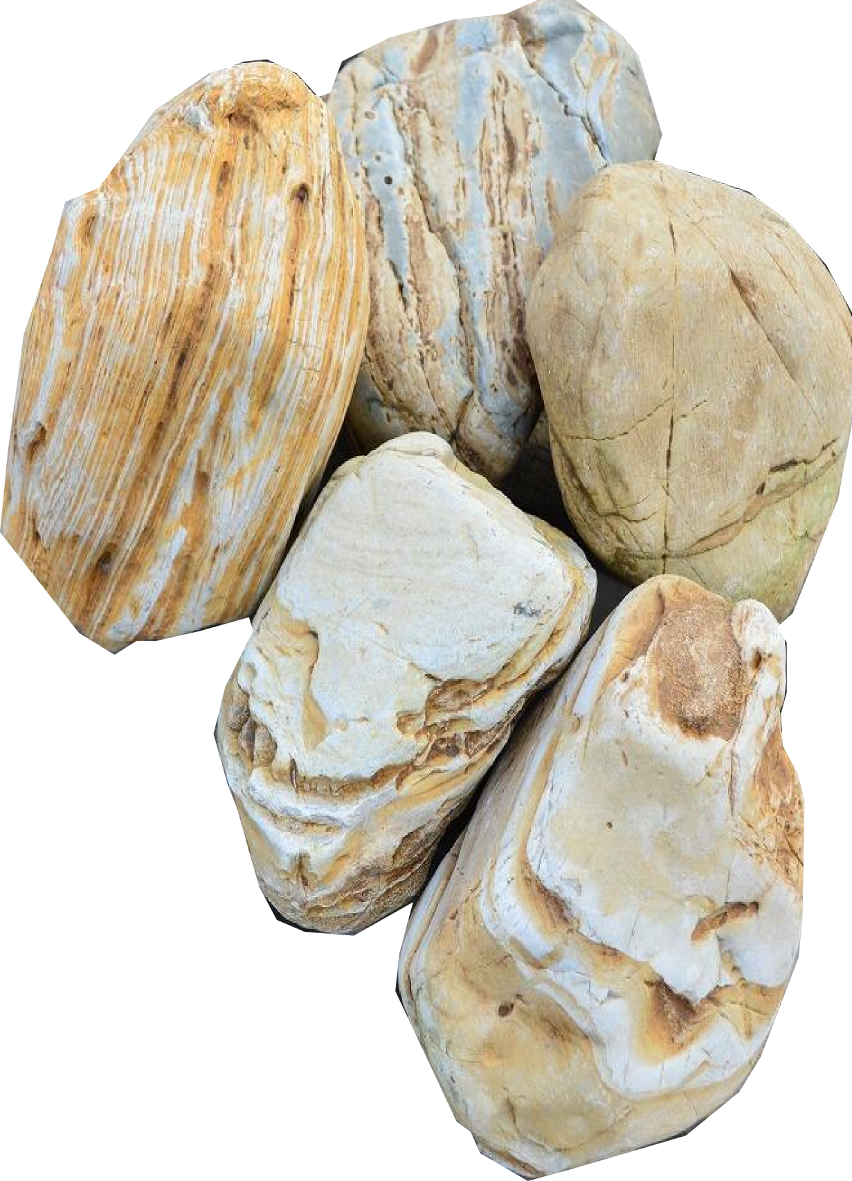 マーブルストーン【5個】新入荷マーブル模様の珍しい庭石 送料格安!:niwaisi0107