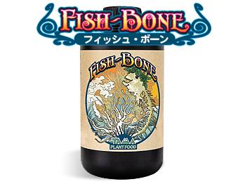 Fish Bone(フィッシュボーン)